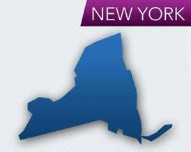 Ny Court Says Human Rights Law Doesn T Cover Public School