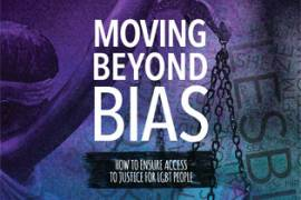https://www.lambdalegal.org/publications/moving-beyond-bias